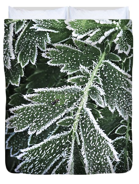 Frosty leaves macro Duvet Cover by Elena Elisseeva
