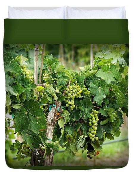 Fruit On The Vine Duvet Cover by Lucinda Walter