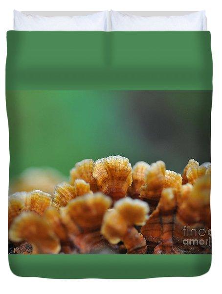 Fungus Growing On Log Duvet Cover by Dan Friend