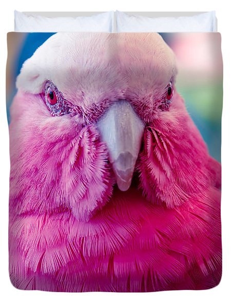 Galah - Eolophus Roseicapilla - Pink And Grey - Roseate Cockatoo Maui Hawaii Duvet Cover by Sharon Mau