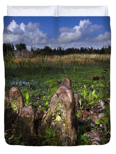 Garden In The Glades Duvet Cover by Debra and Dave Vanderlaan