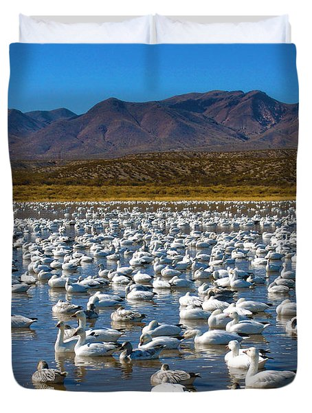 Geese at Bosque Del Apache Duvet Cover by Kurt Van Wagner