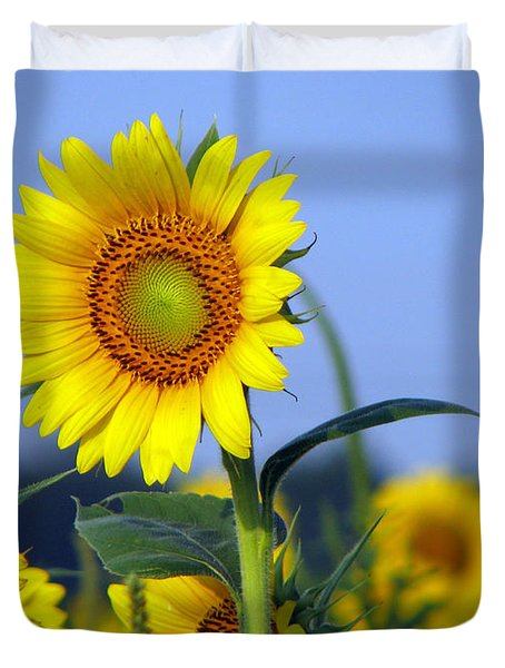 Getting To The Sun Duvet Cover by Amanda Barcon