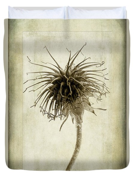 Geum Urbanum In Sepia Duvet Cover by John Edwards