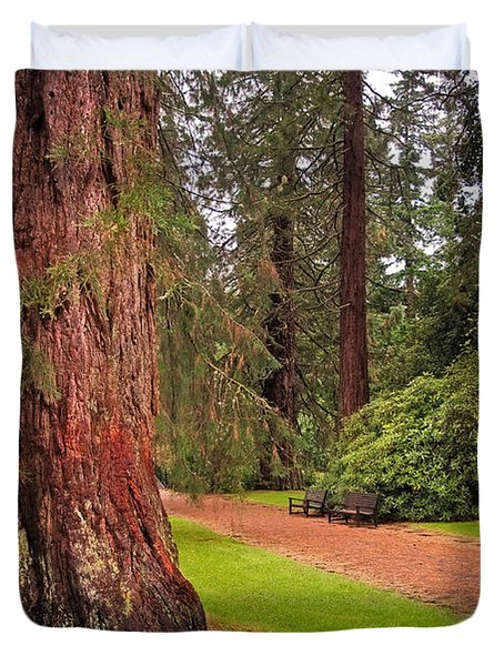 Giant Sequoia Or Redwood. Benmore Botanical Garden. Scotland Duvet Cover by Jenny Rainbow