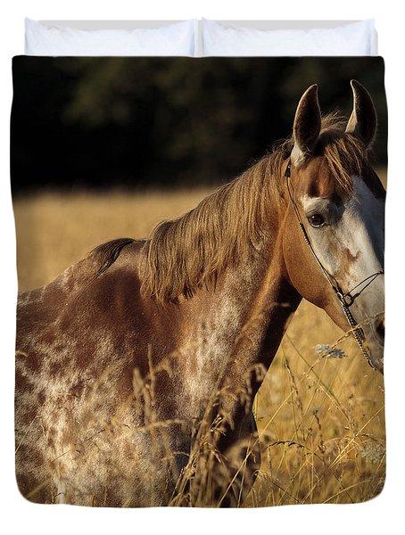 Giraffe Horse D7330 Duvet Cover by Wes and Dotty Weber