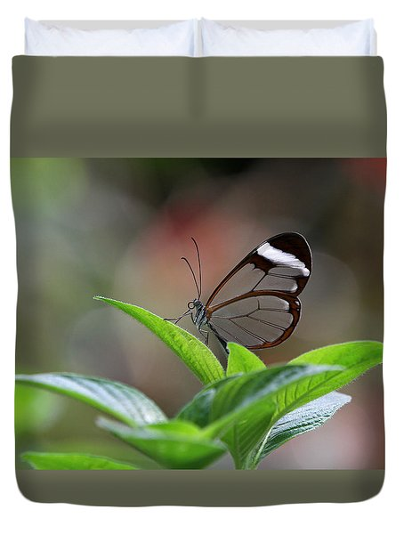 Glasswing Butterfly Duvet Cover by Juergen Roth