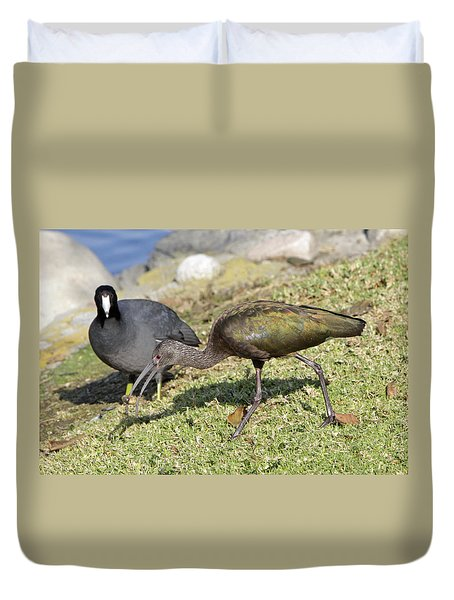 Glossy Ibis Duvet Cover by Shoal Hollingsworth