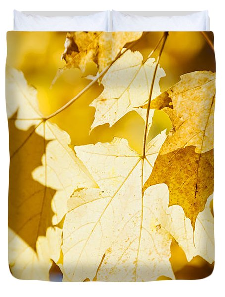 Glowing Fall Maple Leaves Duvet Cover by Elena Elisseeva