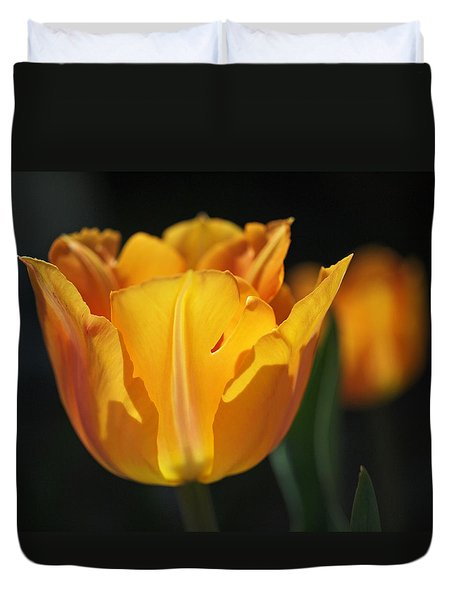 Glowing Tulips Duvet Cover by Rona Black