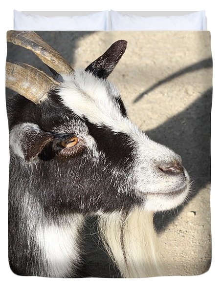 Goat 7d27402 Duvet Cover by Wingsdomain Art and Photography