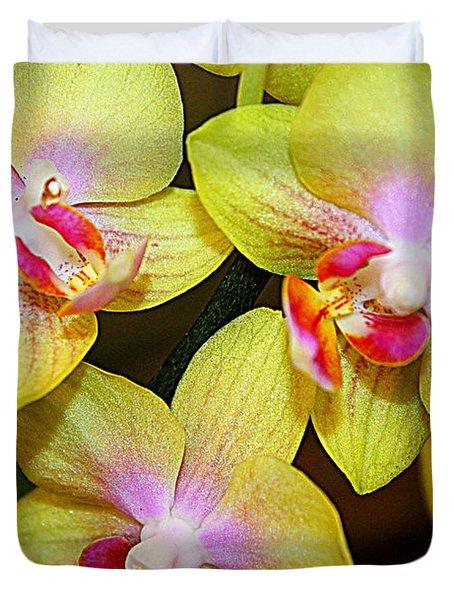 Golden Orchids Duvet Cover by Dora Sofia Caputo Photographic Art and Design
