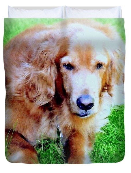Golden Retriever Duvet Cover by Kay Novy