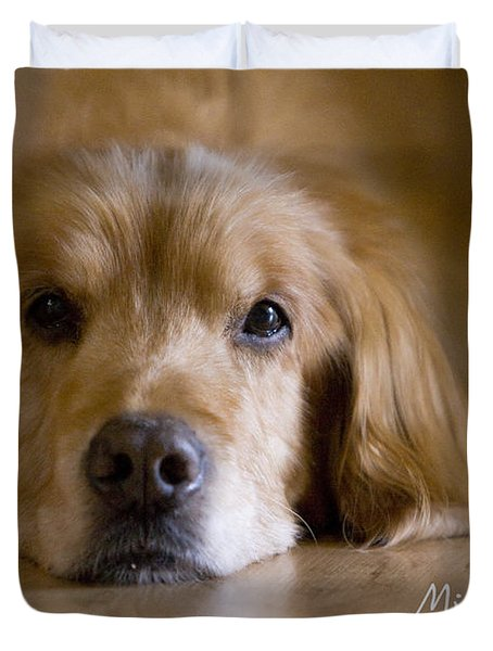 Golden Retriever Missing You Duvet Cover by James BO  Insogna