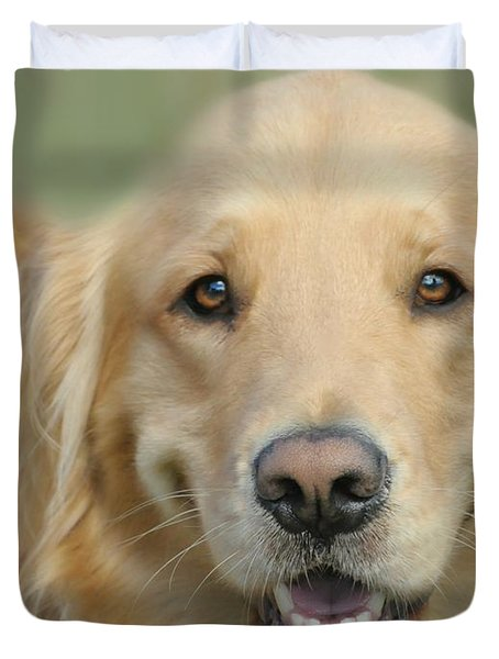 Golden Retriever Standard Duvet Cover by Diana Angstadt