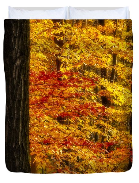 Golden Trees Glowing Duvet Cover by Susan Candelario