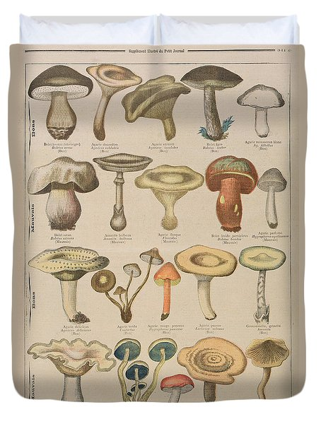 Good And Bad Mushrooms Duvet Cover by French School