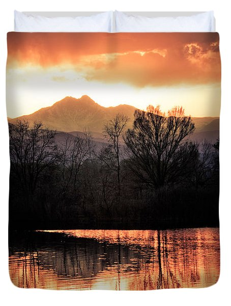 Goose On Golden Ponds 1 Duvet Cover by James BO  Insogna