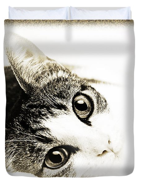 Grand Kitty Cuteness 3 High Key Duvet Cover by Andee Design