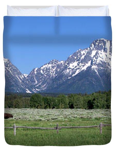 Grand Teton Buffalo Duvet Cover by Brian Harig