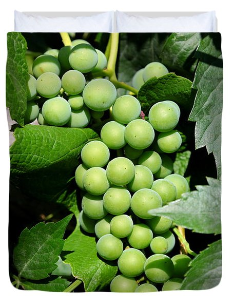 Grapes on the Vine Duvet Cover by Carol Groenen