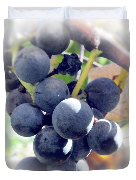Grapes On The Vine Duvet Cover by Kathleen Struckle