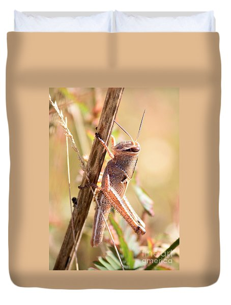 Grasshopper In The Marsh Duvet Cover by Carol Groenen
