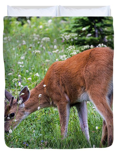 Grazing Young Buck Duvet Cover by Mike Dawson
