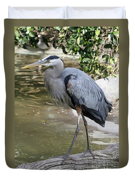 Great Blue Heron Duvet Cover by Shoal Hollingsworth