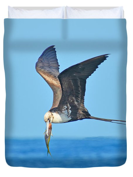 Great Frigate Bird Duvet Cover by Chris Thaxter