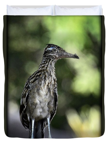 Greater Roadrunner  Duvet Cover by Saija  Lehtonen