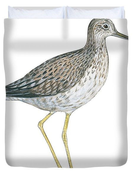 Greater Yellowlegs  Duvet Cover by Anonymous