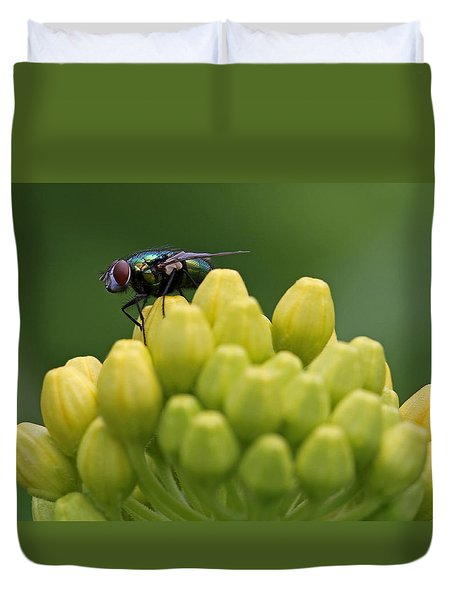 Green Bottle Fly Macro Duvet Cover by Juergen Roth