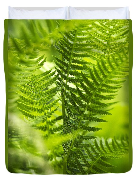 Green Fern Art Duvet Cover by Christina Rollo