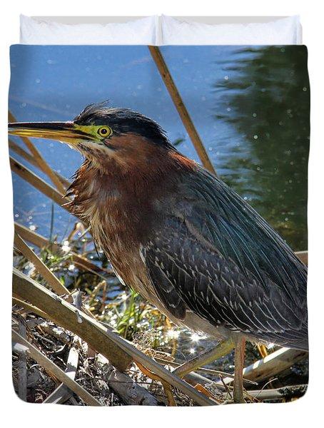 Green Heron  Duvet Cover by Mariola Bitner
