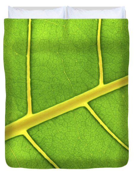Green leaf close up Duvet Cover by Elena Elisseeva