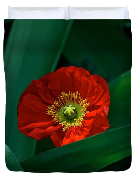 Green Loves Red Loves Green Duvet Cover by Byron Varvarigos
