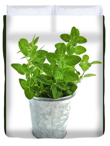 Green oregano herb in small pot Duvet Cover by Elena Elisseeva
