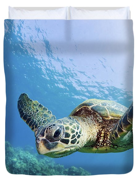 Green Sea Turtle - Maui Duvet Cover by M Swiet Productions