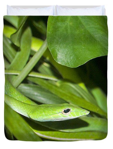 Green Snake Duvet Cover by Greg Reed