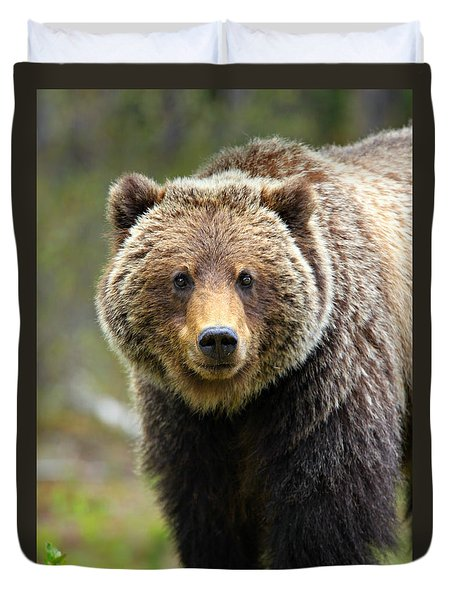 Grizzly Duvet Cover by Stephen Stookey