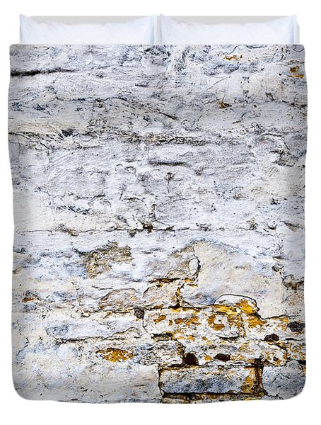 Grunge wall Duvet Cover by Elena Elisseeva