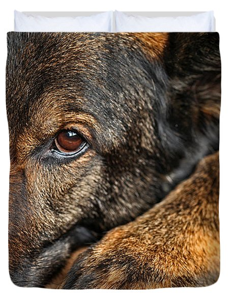 Guard Dog At Rest Duvet Cover by Karol  Livote