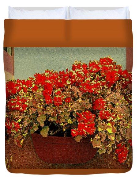 Hanging Pot With Geranium Duvet Cover by Ben and Raisa Gertsberg