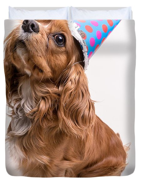 Happy Birthday Dog Duvet Cover by Edward Fielding