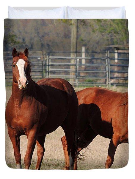 Happy Horses Hoofin-it Duvet Cover by Kim Pate
