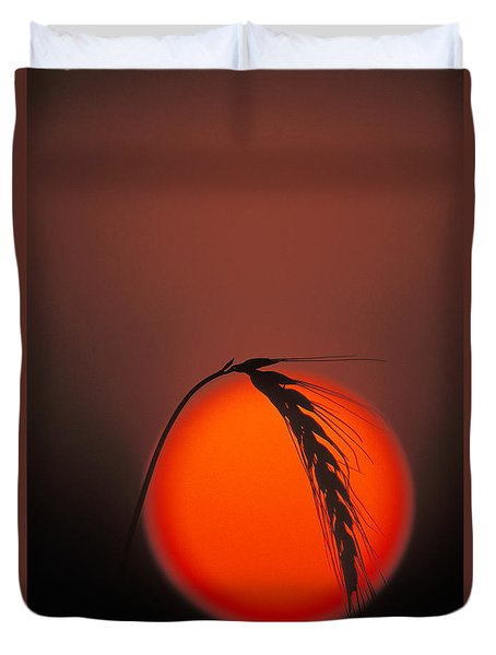 Harvest Sunset - Fs000416 Duvet Cover by Daniel Dempster