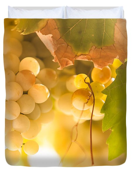 Harvest Time. Sunny Grapes VI Duvet Cover by Jenny Rainbow