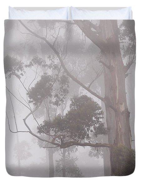 Haunted Forest. Nuwara Eliya. Sri Lanka Duvet Cover by Jenny Rainbow