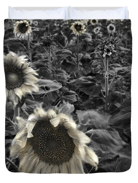 Haunting Sunflower Fields 2 Duvet Cover by Dave Dilli